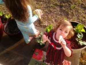 Autumn, left, 3-and-a-half, and Chloe, right, 1-and-a-half years old, among the pots on our back patio. That's where we do our winter container gardening.