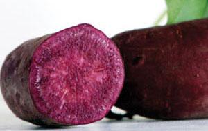 all-purple-sweet-potato